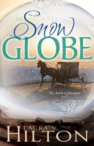 snow globe cover 2